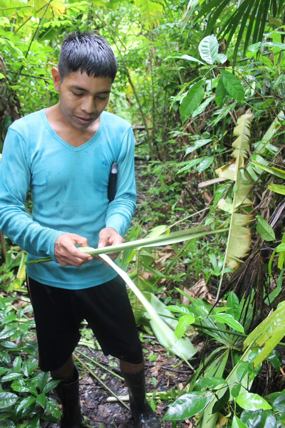 man in dense forest holding long leaves