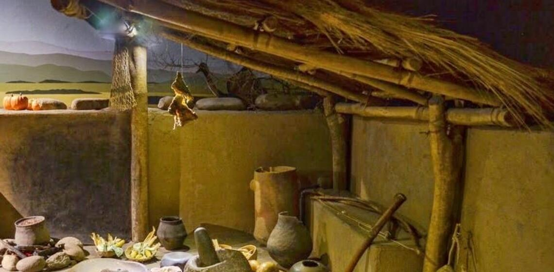 house interior, wood and grass roof, stone and woods tools, exterior landscape visible from within
